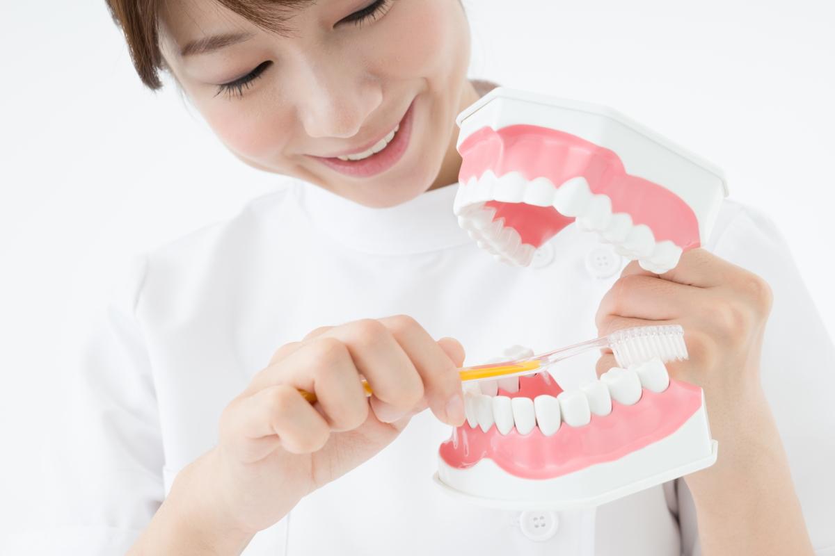 歯科衛生士になるには?必要とされる資格や仕事内容を徹底解説